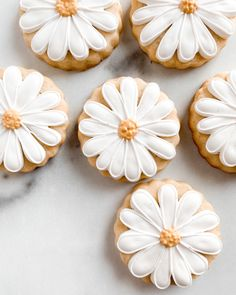 Royal Icing Cookies, Sugar Cookies Recipe, Unique Recipes, Sweet Recipes, Daisy Party, Paint Cookies, Ideias Diy, Creative Food, No Bake Cake