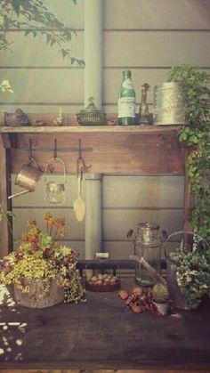 棚の画像 by saitaka211さん   棚とカフェみたいな暮らしコンテストと多肉植物