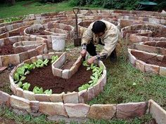 Food growing in a labyrinth will have lot of positive vibration