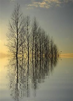 Reflections in endless ripples...