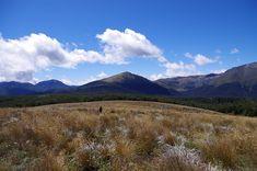 Gordons Pyramid, Kahurangi National Park - Kahurangi National Park - Wikipedia Map Of New Zealand, Parks Department, National Parks Map, Forest Park, South Island, Rafting, Forests, West Coast
