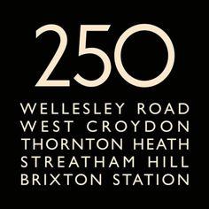 London Bus Blind Bus Route 250