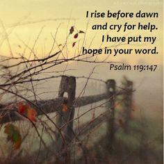 PSALM 119:147