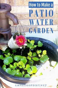 a Container Water Garden for Your Patio How to make a container water garden for your patio.How to make a container water garden for your patio. Water Garden Plants, Small Water Gardens, Container Water Gardens, Container Gardening, Diy Container Pond, Pond Plants, Gardening Vegetables, Patio Pond, Diy Pond