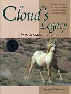 Cloud the stallion!