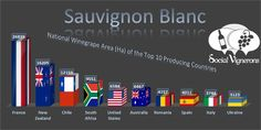 i0.wp.com socialvignerons.com wp-content uploads 2015 12 Sauvignon-Blanc-Top-10-Countries-World-Vineyard-Surface-Area-Wine-Social-Vignerons.jpg