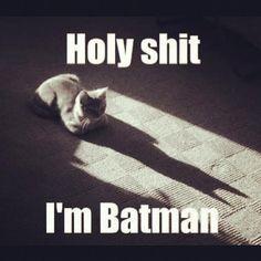 LOL LOL LOL LOL   sorry for the bad word!!!  :)