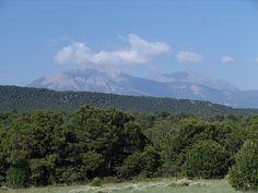 Silver Spurs Ranch Parcel 28, 39 acres for $67,000