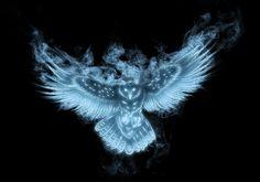 Owl Patronus by Tribalchick101.deviantart.com on @deviantART