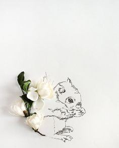squirrel and Flower Photograph