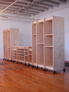 Art Storage Cabinets for storing art; paintings, drawings, books, prints, sculpture, textiles, art supplies, and more.
