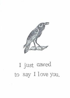 Crow / Raven I just cawed to say I love ❤️ you Vintage Humor, Funny Vintage, Noragami Bishamon, Noragami Anime, Say I Love You, My Love, I Love You Funny, Get Well Funny, Quoth The Raven