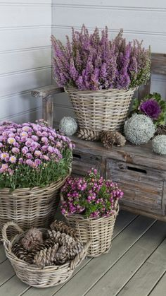 HOW GORGEOUS & SUCH A BEAUTIFUL WAY TO 'DRESS' THE FRONT VERANDAH OR ENTRANCE TO THE HOME!!