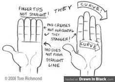 Drawing hand basics by Tom Richmond