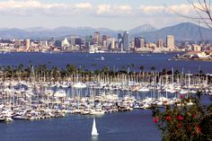San Diego, California ~ wow!  Fantastic scenery, lovely weather, excellent shopping, siteseeing and great landscape!