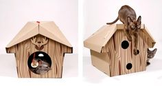 A rustic Cat Cabin. | 15 Cat Products You Didn't Know You Needed
