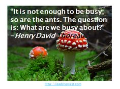 """It is not enough to be busy; so are the ants. The question is: What are we busy about?"" -Henry David Thoreau"