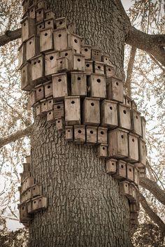 """Control Tower,"" a bird condominium by environmental artist Cameron Hockenson. Montalvo Arts Center, Saratoga, CA."