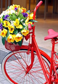 Red bicycle with basket & flowers