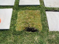 Patio/Walkway Pavers -- lay them down first for a few days and let the grass color tell you where to dig when you are ready to actually install them Diy Patio, Backyard Patio, Backyard Landscaping, Patio Ideas, Pavers Ideas, Pergola Patio, Grass Pavers, Paver Walkway, Walkways