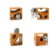 CATable cat bed doubles as a pet furniture piece which can be used as a side table for your living room too making it a good cat furniture piece. Rustic Cat Furniture, Pet Furniture, Modular Furniture, Cat Cube, Living With Cats, Cat Playground, Modern Playground, Wooden Cubes, Cat Room