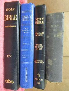 Index burgundy rainbow bible study thumb