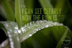 #raindrops #weather #rain #bokeh #macro Weather Rain, Rain Drops, Bokeh, Diamond Earrings, Bracelets, Jewelry, Jewlery, Jewerly, Schmuck