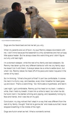 Dogs are the BEST