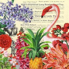 4 Single Lunch Party Paper Napkins for Decoupage Decopatch Craft Tropical Garden