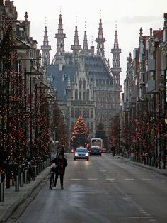 I've only been on a train that stopped in Brussels, but never actually set foot in Belgium. Think I have to after seeing this photo of Leuven, Belgium Places Around The World, Oh The Places You'll Go, Travel Around The World, Places To Travel, Places To Visit, Around The Worlds, Voyage Europe, Wonders Of The World, Travel Inspiration