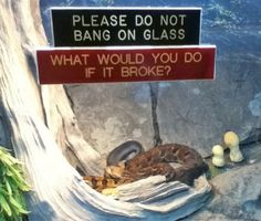 A very good question :)    (find more funny signs at funnysigns.net)