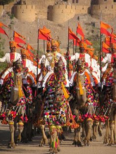 Desert Festival in Jaiselmir , India The pageantry here is stunning!  Seriously.  Of course, I love banners and flags but the real treat here is the camel.  They are glorious as God made them but never before have I seen a better dressed camel!!!