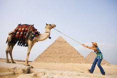 There are numerous Egypt tour packages that could offer people economical solution.
