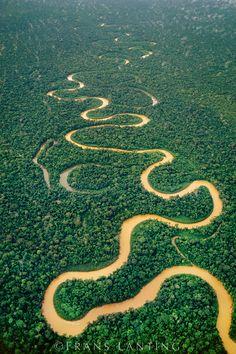 Tambopata Jungle, Peru.  Get Lost.