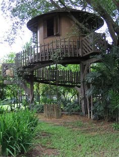 Treehouse.  I would love to do a treehouse with a large, spiralling ramp, so people in wheelchairs could get the treetop experience.
