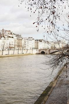 | ♕ |  Along the Seine - Paris spring  | by © Carin Olsson | via ysvoice