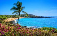 Treasuring Hawaii Through Art (+ Giveaway) - Go Visit Hawaii