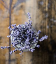 Lavender Cleaning Paste Recipe