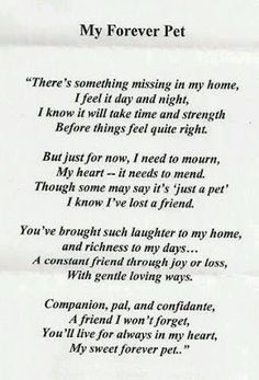 Pet Loss Quotes - Ever Memorial Grief Support When Pets . Souvenir Animal, My Bo, Dogs Tumblr, I Love Dogs, Puppy Love, Pet Poems, Jiff Pom, Pet Loss Grief, Loss Of Pet