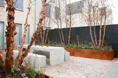 Garden Care, Garden Pool, Garden Trees, Water Garden, Garden Landscaping, Modern Garden Design, Landscape Design, Small Gardens, Outdoor Gardens