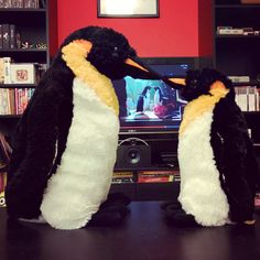 mr & mrs pungu got a little emotional watching their buddy monty in his new christmas commercial for john lewis. have you seen it yet? #penguin #penguins #pinguin #pinguine #pinguino #pinguinos #pinguim #pingouin #pingüino #ペンギン #пингвин #펭귄 #instabird #antarctica #stuffedanimal #pingu #penguinlove #pinguinito #montythepenguin #johnlewis #johnlewisadvert #montypenguin #monty #johnlewisxmas #johnlewischristmas #ilovepenguins #montythepenguin #johnlewiscommercial #truelove #montyschristmas
