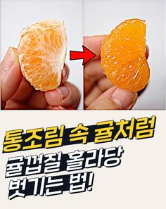 Food N, Korean Food, Food Plating, Grapefruit, Food Hacks, Cooking, Tips, Desserts, Sandwiches
