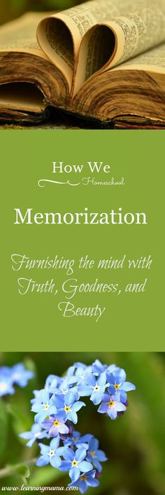 Memorization is NOT