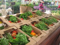 Ripe Organic vegetable boxes!