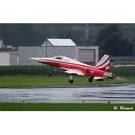 """Patrouille Suisse, """"Tiger"""" Tiger, Air Force, Aircraft, Vehicles, Switzerland, Heels, Aviation, Plane, Airplanes"""