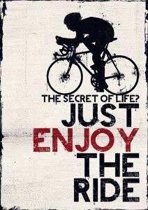 As a beginner mountain cyclist, it is quite natural for you to get a bit overloaded with all the mtb devices that you see in a bike shop or shop. There are numerous types of mountain bike accessori… Bicycle Quotes, Cycling Quotes, Cycling Art, Road Cycling, Cycling Bikes, Fitness Workouts, Bike Workouts, Swimming Workouts, Swimming Tips