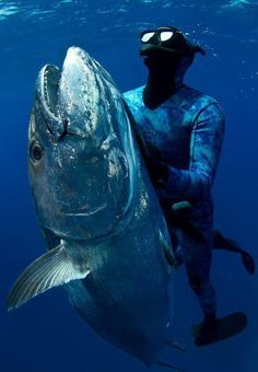 Love spearfishing