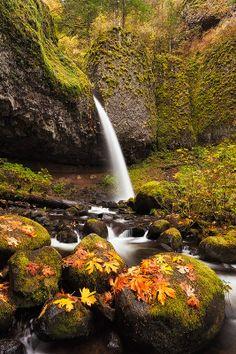 Ponytail Falls, Oregon by Sarah Marino