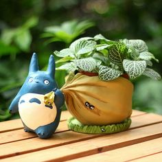 Where is Totoro going with that sack of acorns? Home, to your fairy garden! This adorable Totoro planter comes apart so you can easily water and tend to mini plants and succulents. Totoro planter is a fun addition to a bookshelf, window ledge or desk to Totoro, Garden Planters, Planting Succulents, Planter Pots, Succulent Plants, Succulent Terrarium, Succulent Display, Outdoor Planters, Indoor Garden