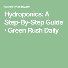 Hydroponics: A Step-By-Step Guide • Green Rush Daily